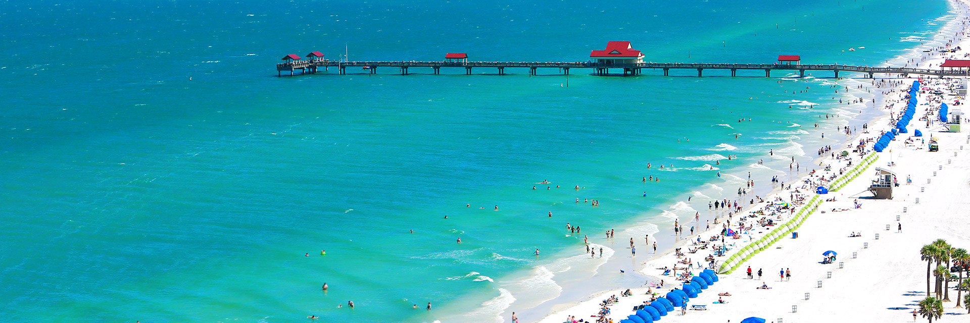 things to do of clearwater florida hotel